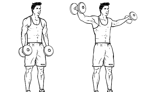 Dumbbell_Lateral_Raise_Power-Partials