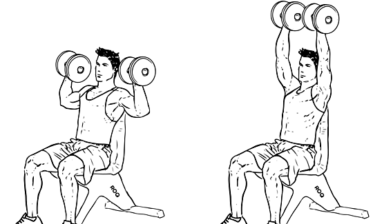 Dumbbell_Shoulder_Press