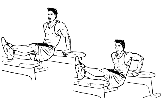 Weighted_Bench_Dip